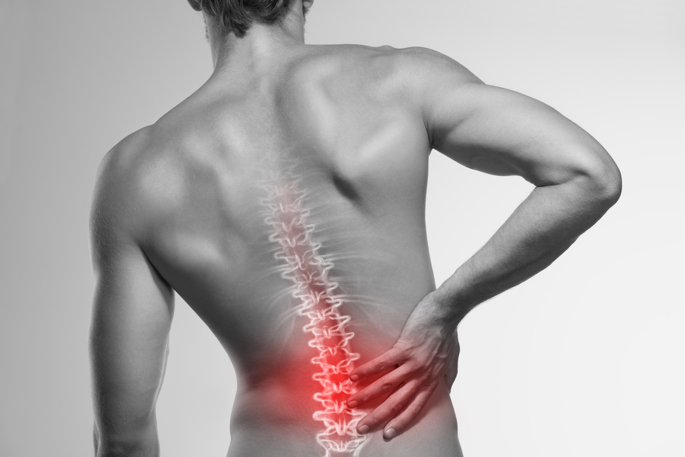 The Back Pain Basics: Are You Following These Back Health Rules?
