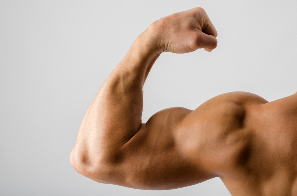 Great Arms Are Made, Not Born: The Best Evidence-Based Biceps/Triceps Workout