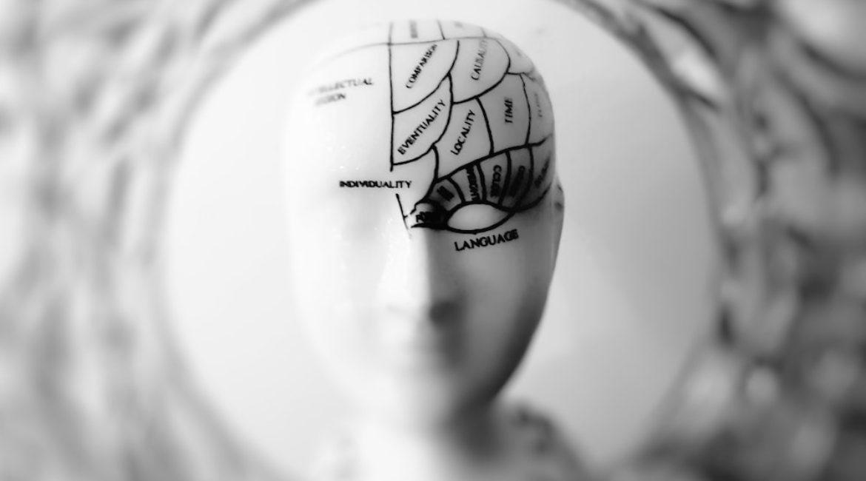 Chiropractic: Brain Octane